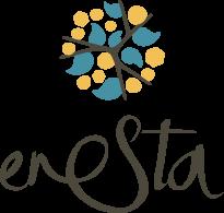 Enesta Logo